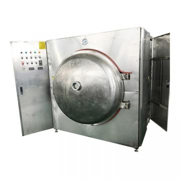 Large Capacity Low Temperature Energy Saving Fruit Vetetable Microwave Vacuum Tray Drying Business Machine