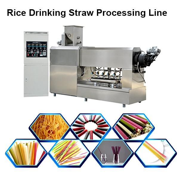 Rice Wheat Straw Extruder Pasta Macaroni Making Machine #1 image