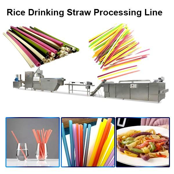 Stainless Steel Food Grade Edible Straws Biodegradable Rice Tapioca Straw Making Machine #1 image